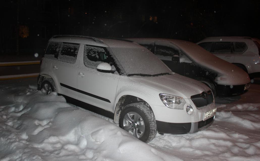 Снежный зверек 4х4