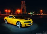 Bumblebee from Gomel