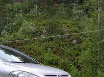 Toyota Ipsum (CM2)